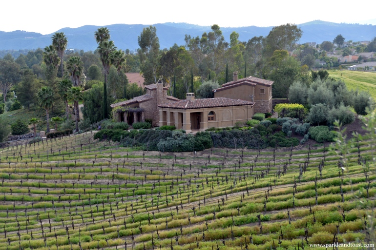 Temecula_Wine_Country01